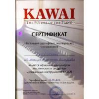 Фортепиано KAWAI у официального дилера в Кирове - Компании PROFISOUND